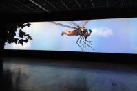 李山台北个展 与上帝对话的蜻蜓,高名潞,李山