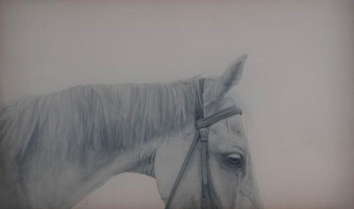 《二分之一蓝 NO.1》 绢本水墨 80×120cm 2013年