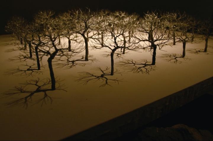 """2012年""""CAFAM未来展""""展出杨心广作品《底下有些石头》"""