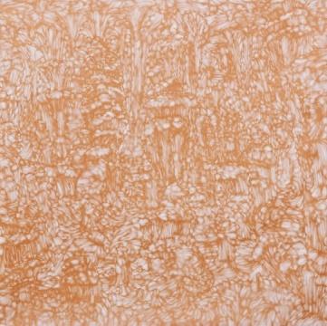 邱志杰《有佛像的溶洞》,丙烯 画布,180×180cm,2013年