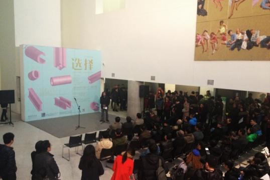 中央美术学院造型艺术年度提名2013——《选择:央美的六个案例》开幕现场