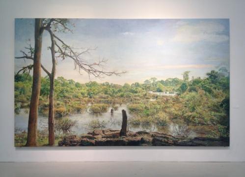 陆亮,《吴哥的沼泽》,布面油画,2010—2014