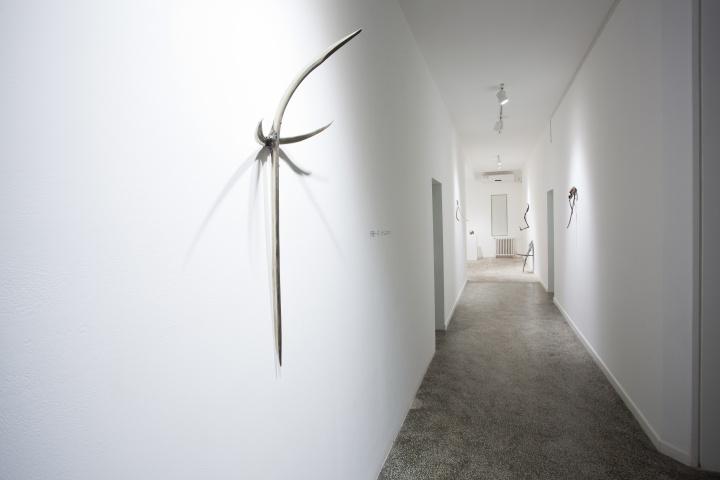 张明放数年一直关注伊藤一洋,2013年年末举行他的小型个展