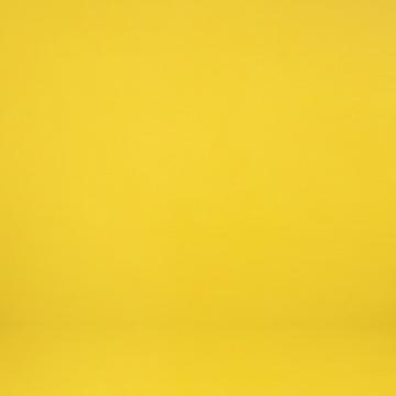 五五画廊带去的胡庆泰的艺术项目,其中一件作品《庆泰,最美的颜色是黄色》