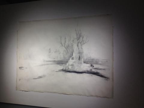 贾蔼力纸上炭笔作品《青年公园》