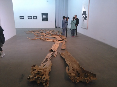 《三棵树之二》,史金淞,装置,1360×1200cm,2007