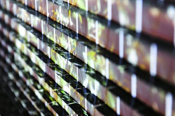 王宁德的《有形之光——一片杨树》细节