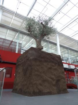 位于公共区域的Maurizio Cattelan的《无题》,橄榄树丛国外进口而来,泥土则是来自上海