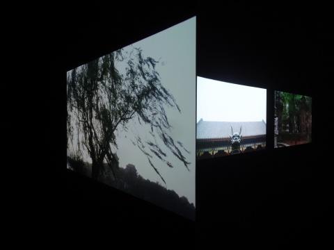 杨福东 《佚名 · 浅颜色》14-16 屏影像装置  彩色8-10 分钟 2014