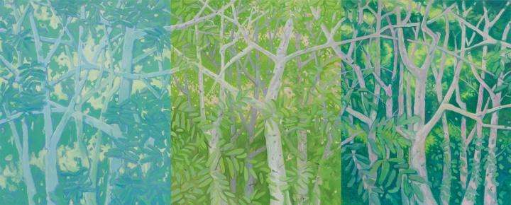《白树林》,布面油画,230x190 cm x3,2013
