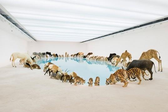 """2013年在澳大利亚布里斯班现代美术馆开幕的大型个展""""归去来兮"""",作品被美国《时代周刊》誉为""""当代的方舟"""""""