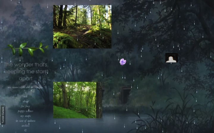 《Download Rain02》 录像装置 02分31秒 2014