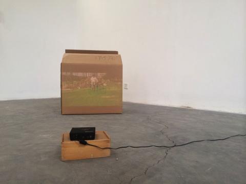 艺术家粱半的作品《梁半》,投影在纸箱上的视频中,梁半骑着一辆被绳子拴住的自行车,重复着骑车、摔倒。
