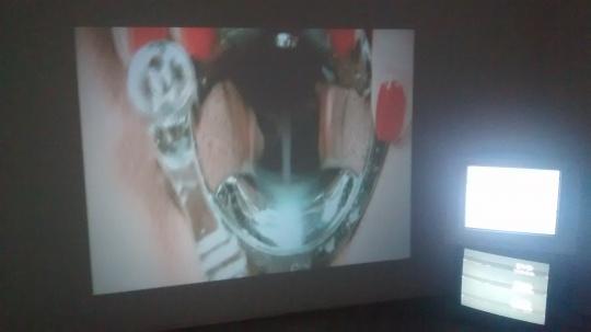 """艺术家李仁靖的作品《李仁靖》分为三个部分,投影、电视机视频以及一篇阐释的文字,她选取概念,并按照阐释的逻辑试图重新排列为一个整体,从""""嬗变""""一词出发,进入到人们对""""习以为常之物""""的对立面中,投影里是放大的女性的生殖器与各种器具的接触,观者反应各异,有人会笑,有人觉得生理不适,产生噁心、紧张等情绪。"""