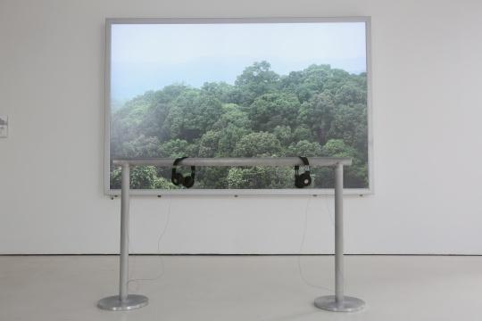 弗拉基米尔•尼科利奇 《没有风景》 彩色灯箱、录音 166cm x 255cm2014