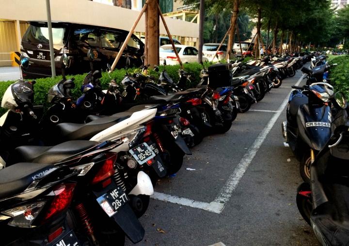 翠绿的路边 无处不见的摩托