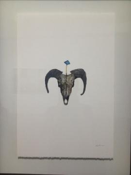 《手稿1-羊头》 56.5×38.5cm 水彩 2014