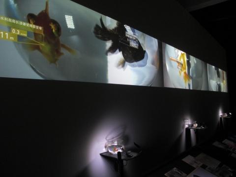 聚焦数据与感知的新锐媒体艺术小组 I&C (龙星如和周姜杉)带来的小礼物《监控》。