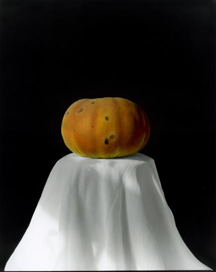 黄磊 《南瓜 2008 (2-1)》 明胶卤化银黑白照片,手工油彩着色 60.5×49.5 cm 2008