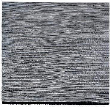 """王光乐《寿漆070311》以85万元的落槌价成交,创艺术家""""寿漆""""系列作品的拍场最高价"""