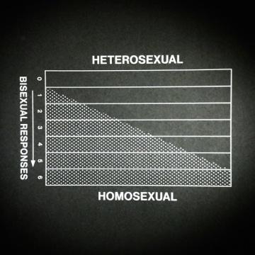 Wellcome Museum里展出的男性性欲高涨的高峰时间曲线图