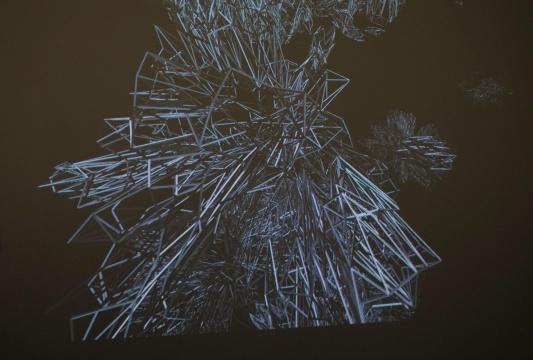 徐文恺 《Meta(实时演算系列)》 尺寸可变 动态影像作品 2014