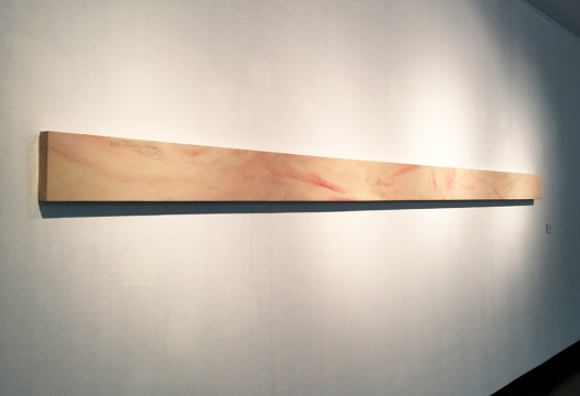 孙佳兴 《皮的研究(二)》 20x400cm  2014