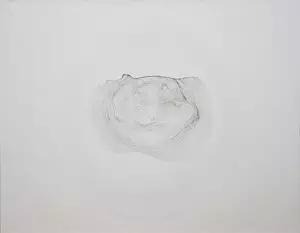 朱昱参展本届香港巴塞尔艺博会作品《茶渍 T24》,2014,布面油画