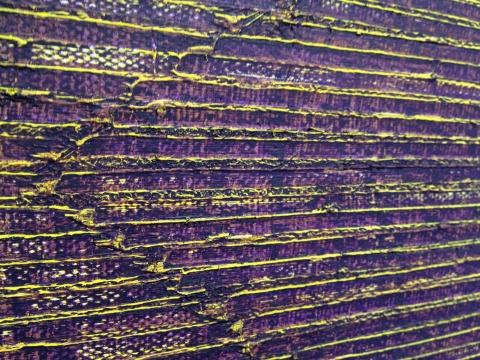 《向中间-黄紫NO.1》局部