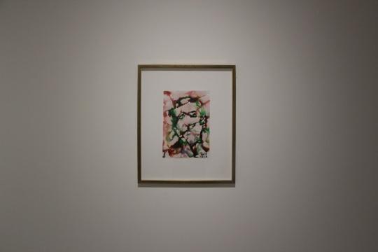 尹朝阳 《愤怒者》20×29cm相纸水彩2011