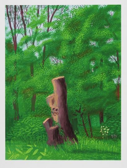 《The Arrival of Spring in Woldgate, East Yorkshire in 2011 (Twenty Eleven) - 22 May》,139.7×105.4 cm,iPad绘画纸上打印,2011年,© David Hockney / Richard Schmidt