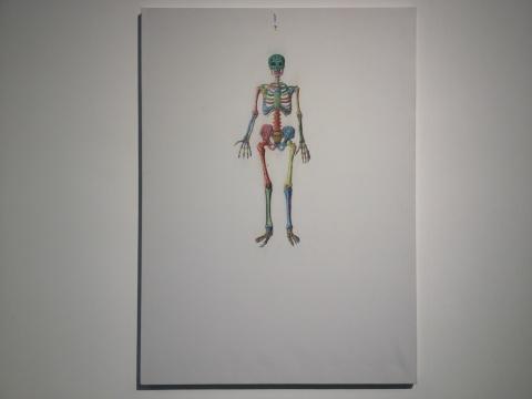 季大纯 《艺用解剖学》综合材料,构图摄取了传统山水画的大面积留白,但'物'的形象却不按逻辑的肆意生长