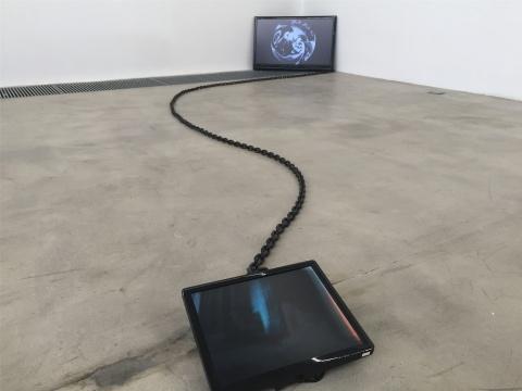 王欣作品《在三分零三秒的时候我看见了一直黑色渡鸦飞过…》