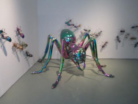 《彩色大蚂蚁》