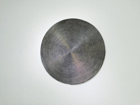 盘状出现的钢筋造成作品平面化的视错觉