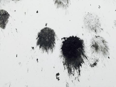 作品中煤球投掷的痕迹细节