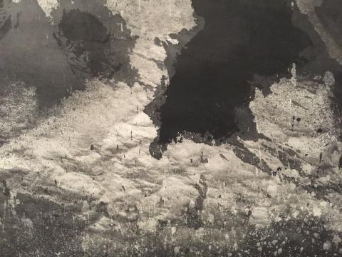 《荷塘.2015》局部