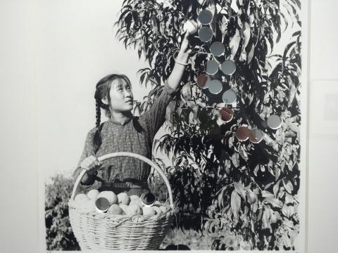 《摘果子》 手工银盐照片、镜子 41×41cm 版本:1/5 2015