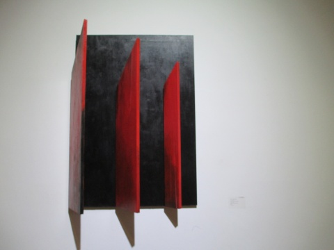 王茜作品《开华的征程》