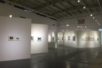 高名潞首次作品展 追溯70年代的内蒙古岁月,范迪安,高名潞,盛 葳