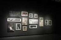 诙谐的黑色幽默 林于思上海首展亮相玉衡艺术中心,林于思