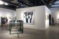 """立方体的世界  """"重现的模仿:威尔弗雷德·陶伯纳摄影艺术""""金鹰当代艺术空间开幕,毛焰,汤国,董文胜,威尔弗雷德·陶伯纳"""