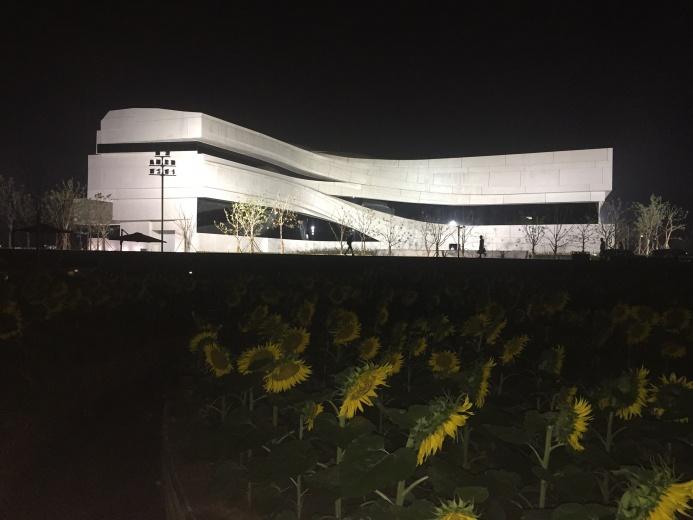 夜幕降临,从向日葵迷宫看美术馆
