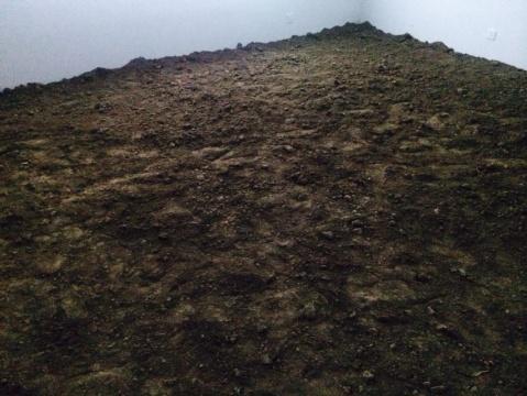 《自由耕种》的展厅现场,脚下的泥土还原了身在其中的体验