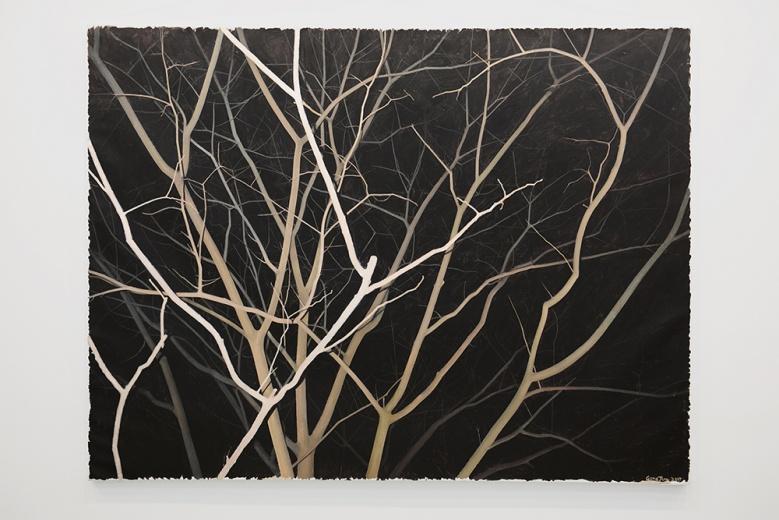 龚剑2015年的最新作品《看这棵灰色的树NO.3》。