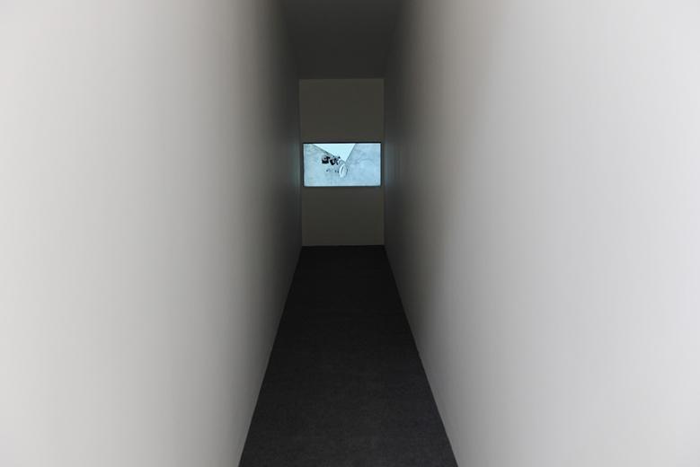 基于场地的限制,9平米美术馆一改之前3m×3m的空间,而把展示空间设计为9m×1m的狭长通道。本次9平米美术馆项目张冰依然坚持策展制,邀请新兴的艺术家李竞雄参加,展出作品《最长的一码》取自2005年的一部同名好莱坞电影。作品包括一部录像和一组人造橄榄球装置。