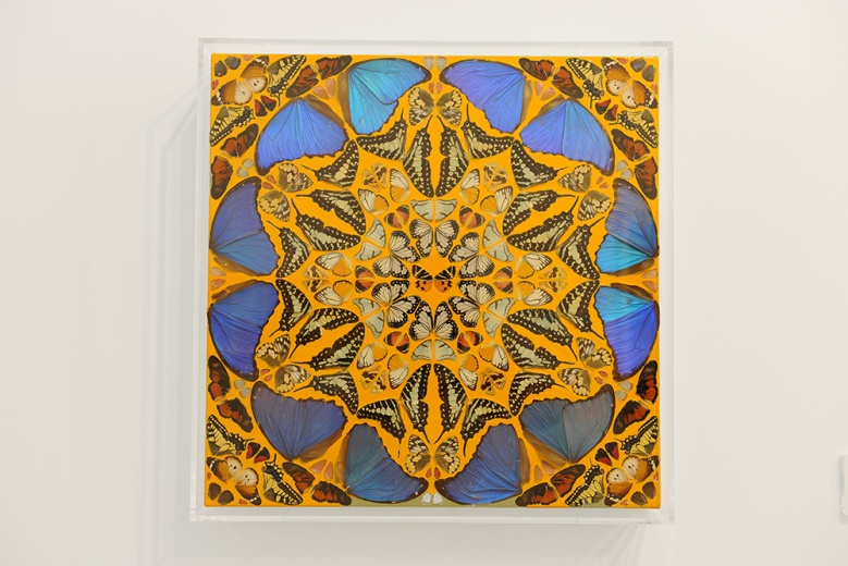 来自达明恩·赫斯特2008年创作的蝴蝶系列作品《诗篇89:慈悲》,45.7cm的小尺寸作品售价为181万人民币。
