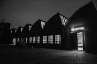 歌德学院(中国)798艺术区空间即将开幕 一个希望激起讨论的场所,卢迎华,乌特·阿达姆茨夫斯基,艾伦·布鲁门斯坦