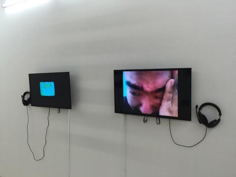 艺术家记录的视频日记
