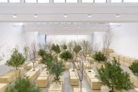 """杀戮和祈祷在同时发生 小野洋子展览""""金梯子""""林冠艺术中心开幕,小野洋子,由金,"""
